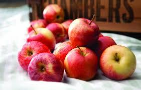 リンゴ・イメージ