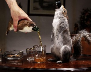 Brewer finds use for a dead stoat