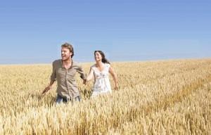 ライ麦畑を